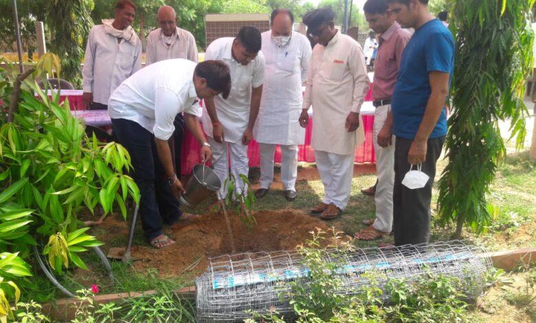 चौमूं विधायक रामलाल शर्मा की पहल, वृक्षारोपण कार्यक्रम का हुआ आगाज...