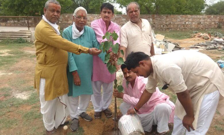 Trees and plants make up the earth :- Dr. Yogesh Sharma